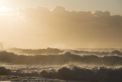 Australia, New South Wales, Tasman Sea at sunrise, waves - GOAF000005
