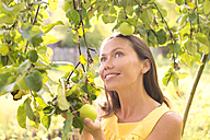Smiling woman under an apple tree - KNTF000456
