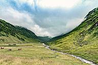 norway, hedmark, Tufsindalen Valley - CSTF001170