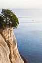 Denmark, Mon Island, Mons Klint, Chalk cliffs - WDF003716