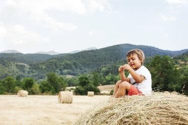 Smiling little boy sitting on bale of straw - VABF000757