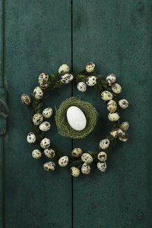Box tree wreath with quail eggs and Easter nest with goose egg on green wood - ASF005992