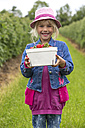 Portrait of happy little girl holding box of strawberries on strawberry field - JFEF000812