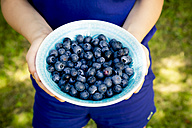 Girl's hands holding bowl of blueberries - LVF005208
