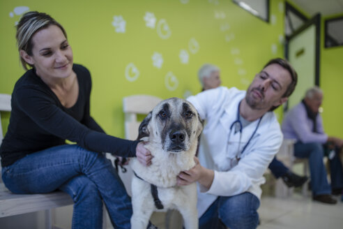 Veterinarian and woman soothing dog - ZEF009806