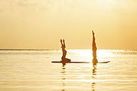 Thailand, couple doing yoga on paddleboard at sunset - SBOF000173
