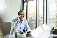 Portrait of smiling man on the phone at home - SBOF000236