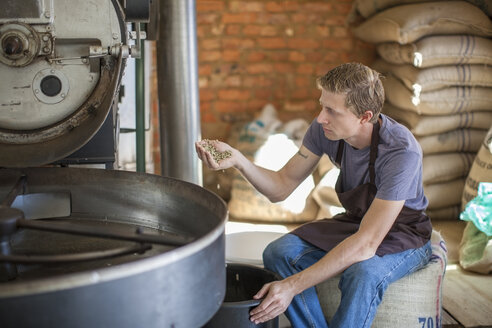 Coffee roaster checking the quality of beans - ZEF009991