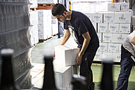 Man packing beer bottles in boxes - ABZF001090