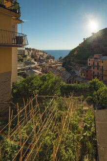 Italy, Manarola, view to the village - OPF000128