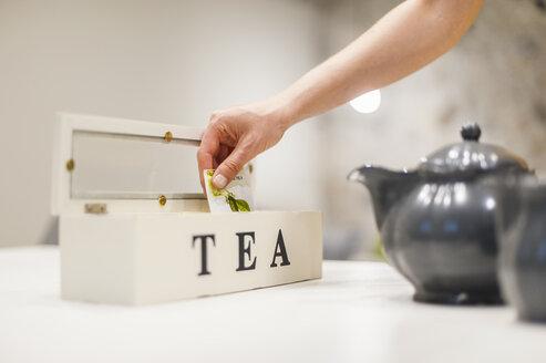 Woman preparing tea - DIGF001168
