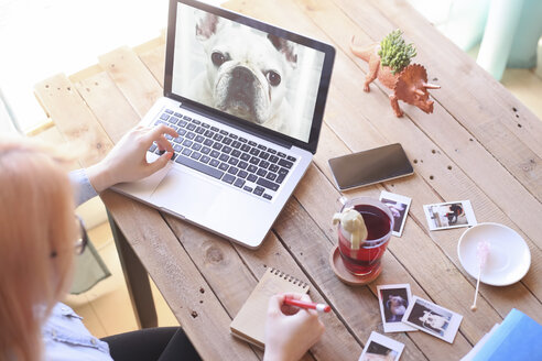 Woman looking at photo of dog on laptop - RTBF000299