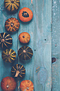 Ornamental pumpkins on blue wood - RTBF000333
