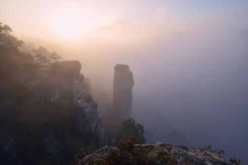 Germany, Saxony, Saxon Switzerland National Park, Bastei, Hoellenhund at Raaber Kessel in fog - RUEF001745