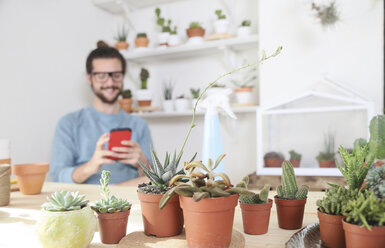 Young man with cell phone behind collection of cacti - RTBF00364