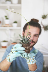 Young man checking the roots of a succulent plant - RTBF00367