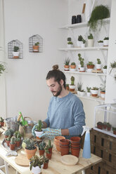 Young man transplanting cactus in his studio - RTBF00373