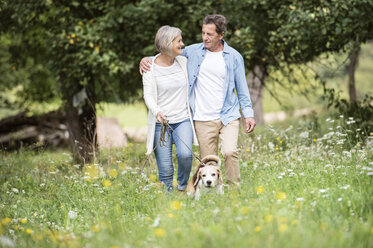 Senior couple on a walk with dog in nature - HAPF00867