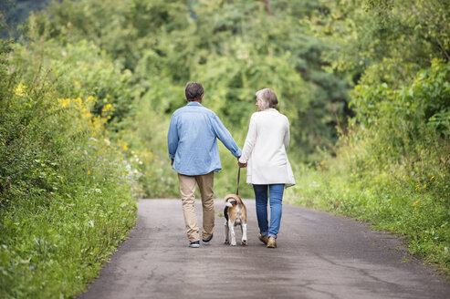 Back view of senior couple on a walk with dog in nature - HAPF00879