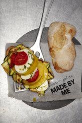 Italian style veggie burger with mozzarella and vegetables - SCF00463