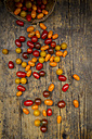 Yellow and red mini tomatoes on wood - LVF05328