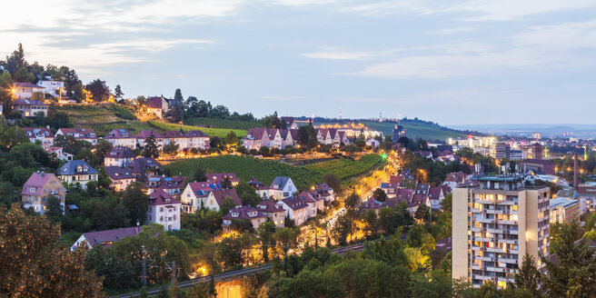 Germany, Baden-Wuerttemberg, Stuttgart, Killesberg, cityscape with houses, vineyards - WDF03756