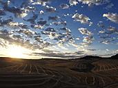 USA, Washington State, Palouse hills, wheat field at sunrise - BCDF00011