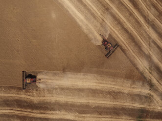 USA, Washington State, Palouse hills, wheat field and combine harvesters - BCDF00017
