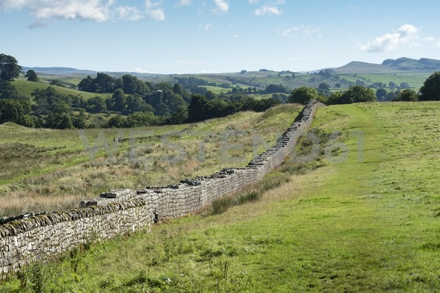 UK, Northumberland, Haltwhistle, Hadrian's Wall - ELF01821