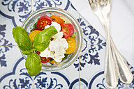 Glass of leaf salad with goat cream cheese and tomatoes - LVF05345
