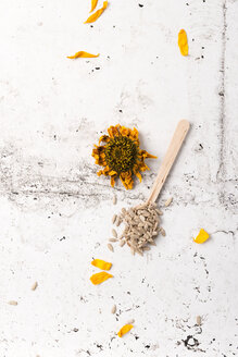 Dried sunflower and sunflower seeds on wooden spoon - MYF01785