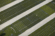 USA, Virginia, Aerial photograph of a nursery in Chesapeake - BCD00096