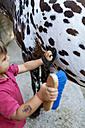 Little boy grooming horse - VABF00794