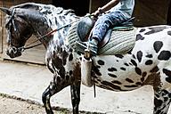 Little boy riding horse, partial view - VABF00800