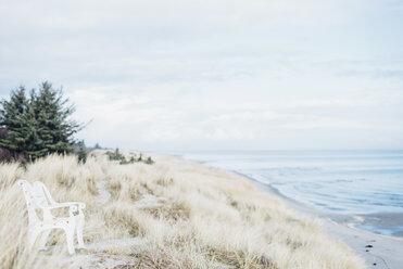 Denmark, Hals, dunes at the Baltic Sea - MJF02019