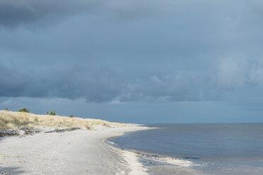 Denmark, Hals, dunes and beach - MJF02028