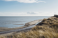Denmark, Hals, dunes and beach - MJF02031