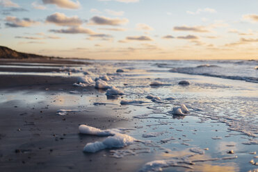 Denmark, North Jutland, tranquil beach at sunset - MJF02058