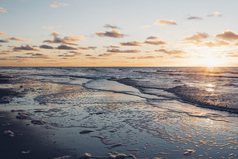 Denmark, North Jutland, tranquil beach at sunset - MJF02061