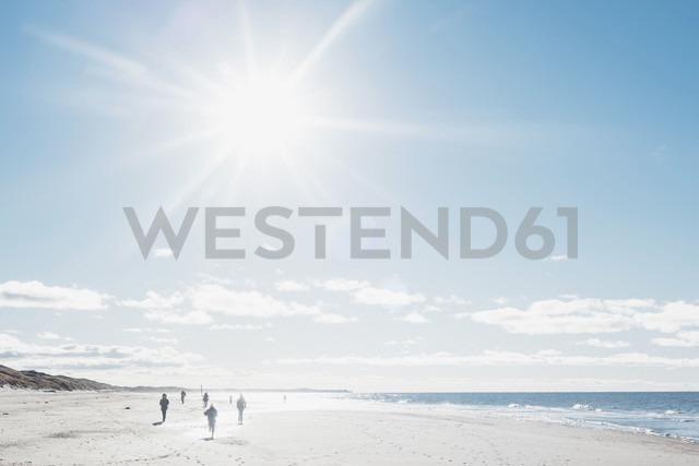 Denmark, Hirtshals, people walking on beach in backlight - MJF02067 - Jana Mänz/Westend61
