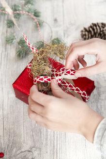 Hands of girl wrapping Christmas present - SARF02956
