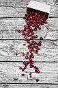Cranberries in bowl - LVF05372