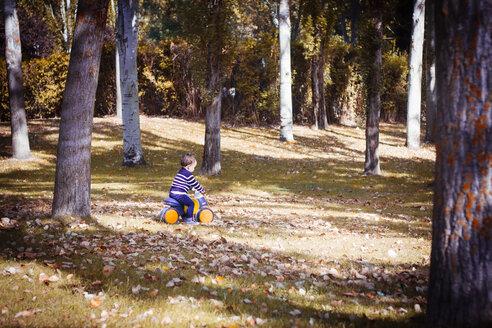 Toddler on bobby car in autumnal park - JPSF00018