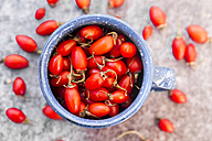Cup of goji berries - SARF02967