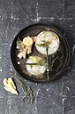 Lemon herb ginger lemonade, rosemary and thyme - MYF01804