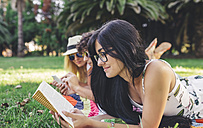 Friends in park reading book and using cell phone - DAPF00364