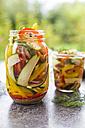 Pickeled vegetables and herbs in preserving jar - SARF02979