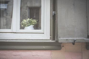 Jar of flowers behind windowpane of residential house - ASCF00665