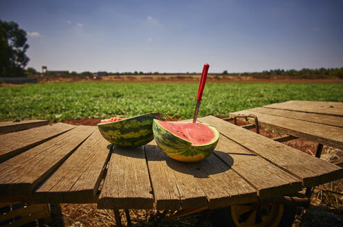 Italy, Apulia, Freshly harvested water melon on wooden cart - DIKF00219