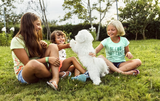 Three girls having fun with a puppy on a meadow - MGOF02538